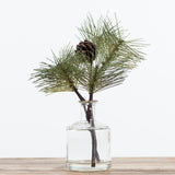 glass bottle with fake pine stem
