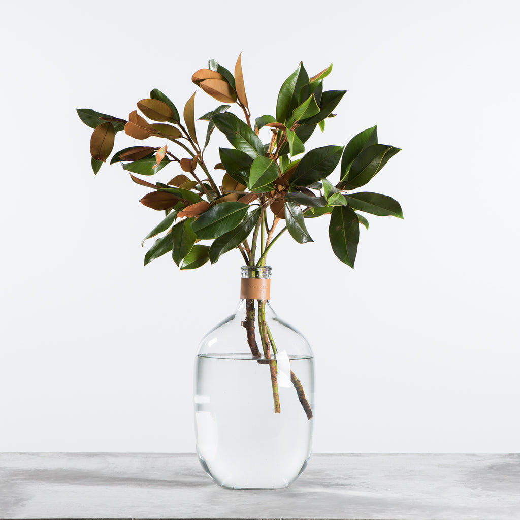 glass bubble vase with leather collar