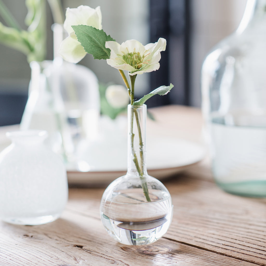 glass circle rooter vase