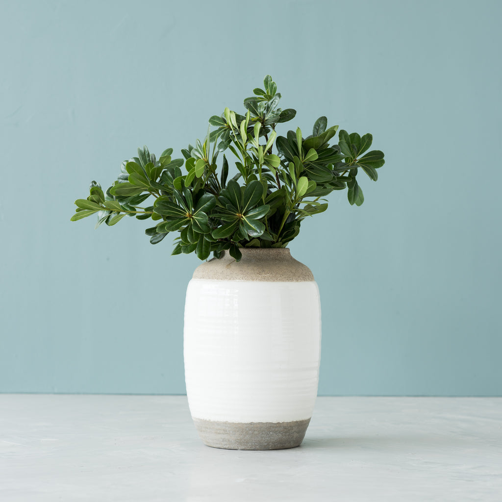 painted concrete jug vase
