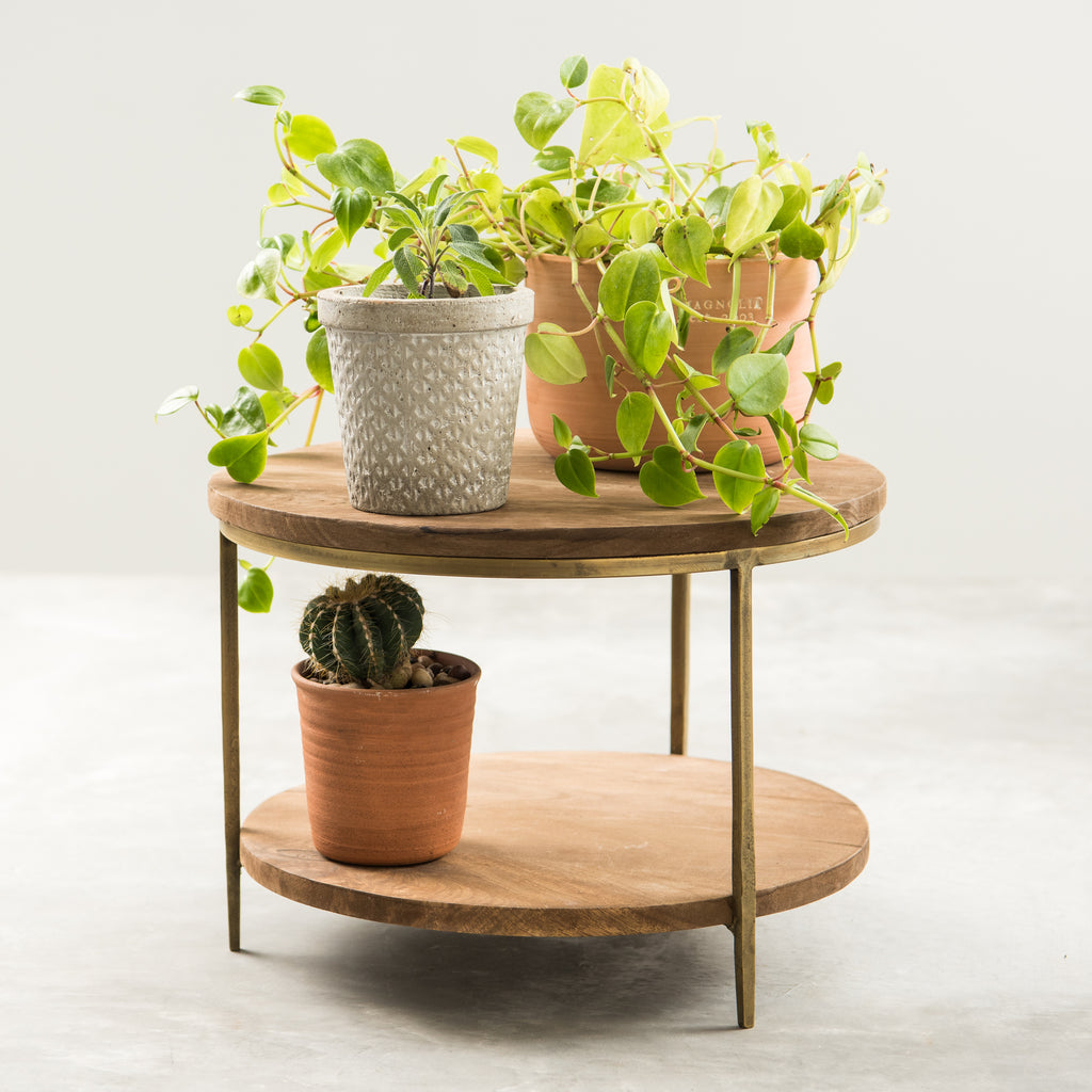 brass and mango wood stand
