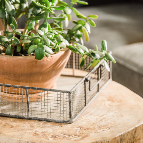 Livingston Metal Wire Tray