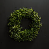 Everly Boxwood Wreath