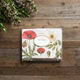 Set of Botany File Folders