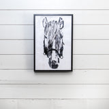 "Framed ""Dolly"" Horse Head"