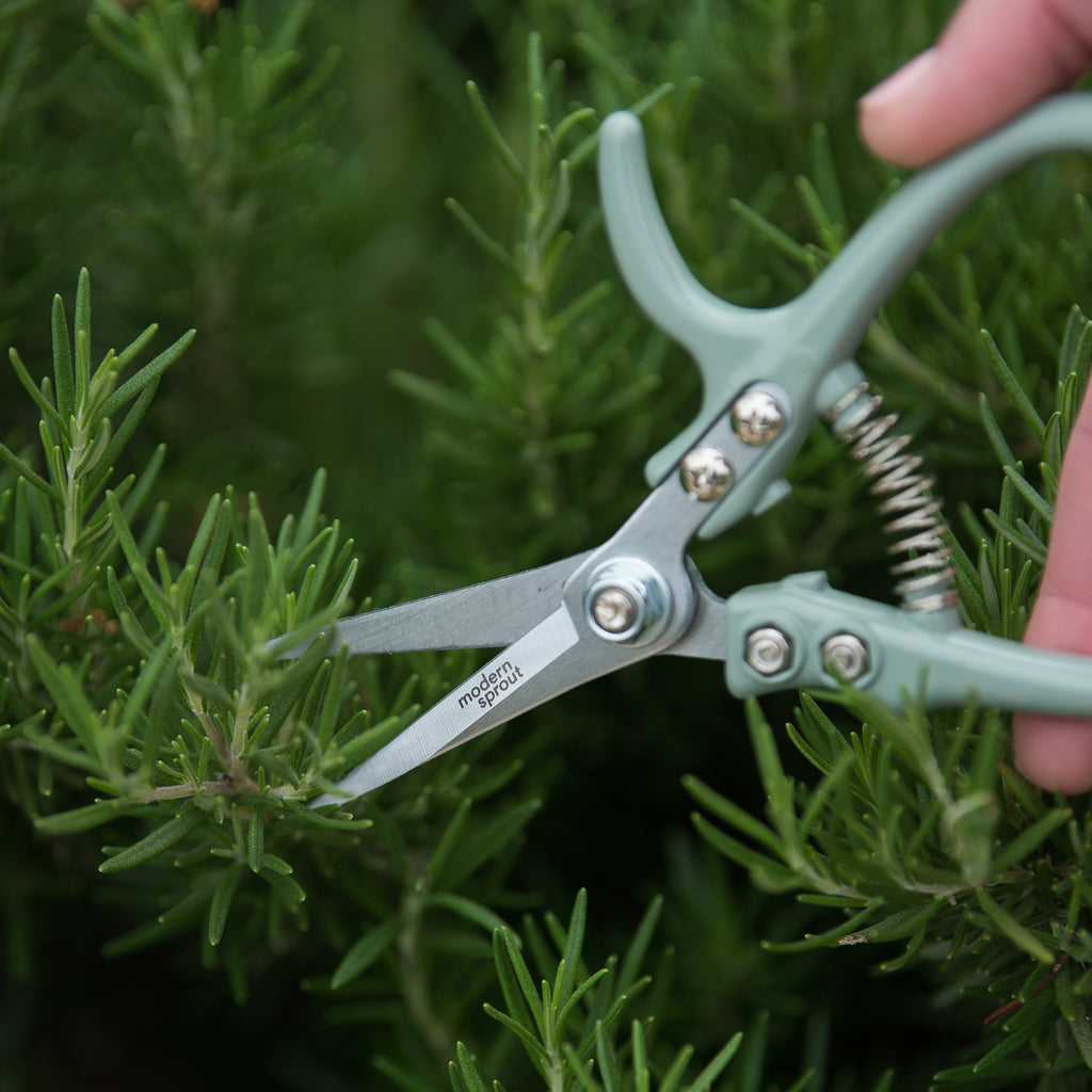 pale mint metal garden pruning shears