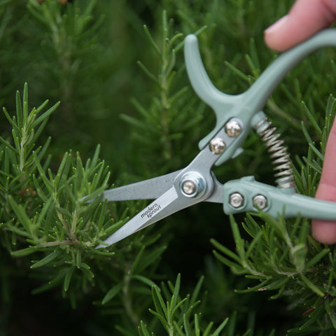 Pale Mint Pruning Shears
