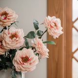 large peach garden rose stem