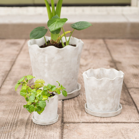 Scalloped Cement Pot