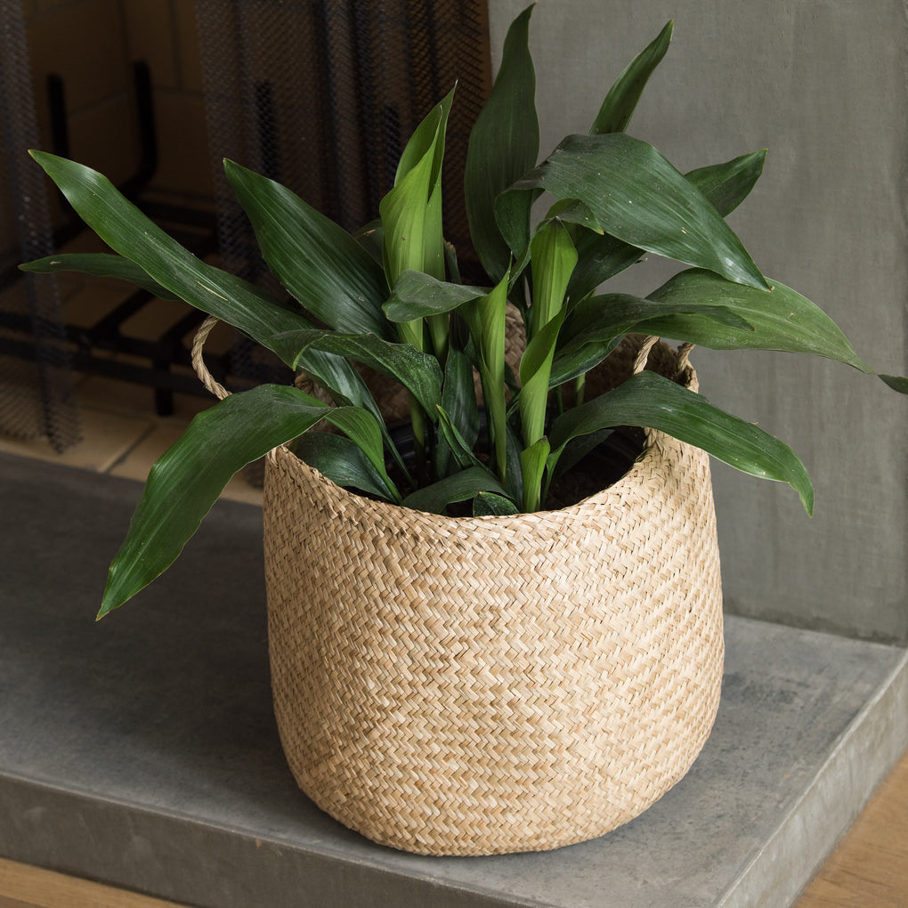 round woven seagrass basket with handles