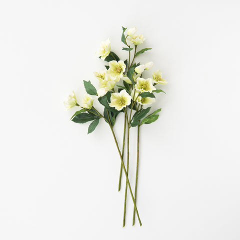 faux white hellebore stem and bloom