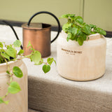 wooden pot with Magnolia Home logo