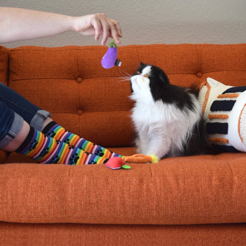 Farm to Tabby cat toys, with Chillvester