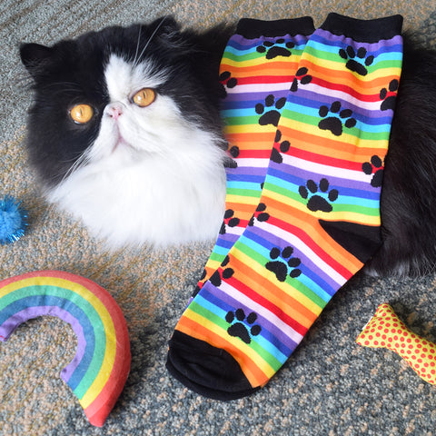 rainbow stripe paw print socks for women