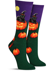 Cute Halloween socks with a black cat and pumpkin