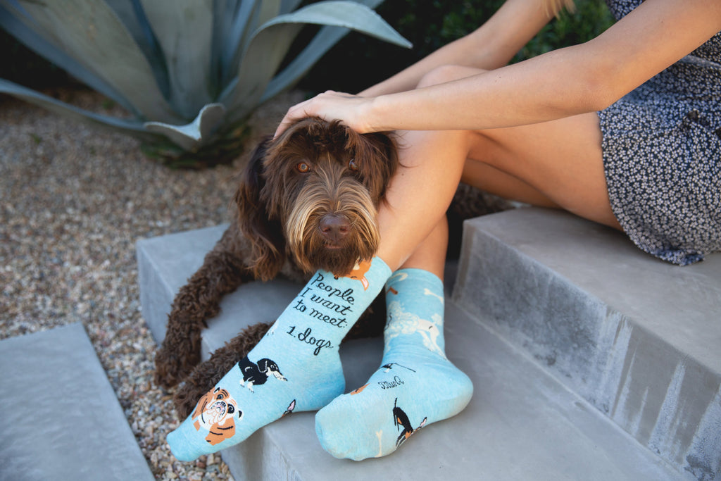 "A woman wearing socks featuring the phrase ""People I want to meet: dogs"" while petting her dog"