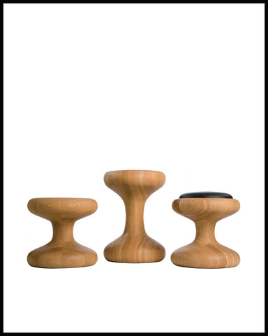Mushroom Family (table)
