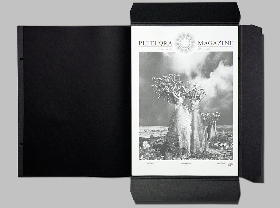 Plethora Magazine Issue #3