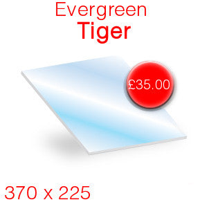 Evergreen Tiger - 370mm x 225mm
