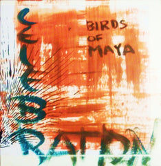 Birds Of Maya - Celebration LP