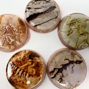 Fossil Hunter! edible image lollipops by I Want Candy!