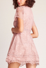 BB Dakota Take Me Back Dress in Rose