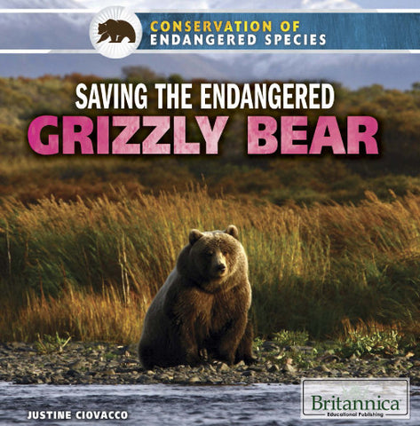 Saving the Endangered Grizzly Bear