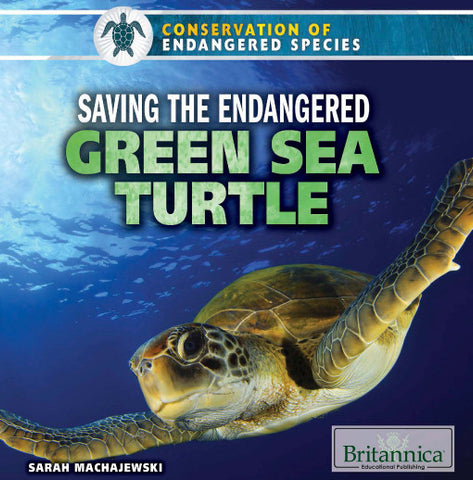 Saving the Endangered Green Sea Turtle