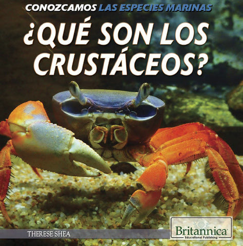 ¿Qué son los crustáceos? (What Are Crustaceans?)