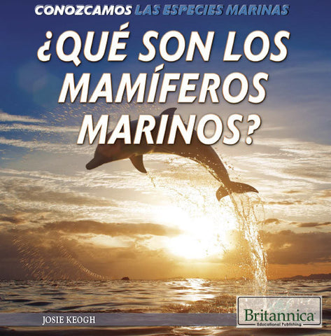 ¿Qué son los mamíferos marinos? (What Are Sea Mammals?)