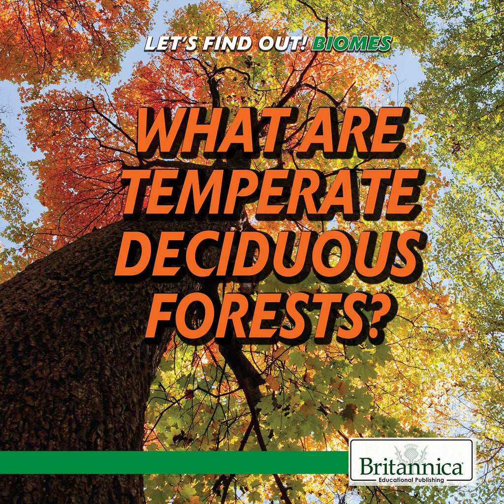 What Are Temperate Deciduous Forests?