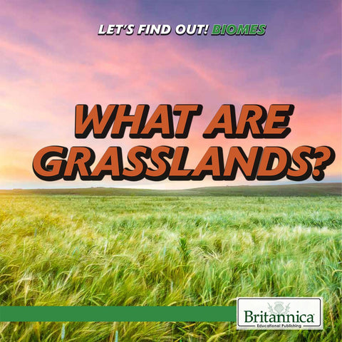 What Are Grasslands?