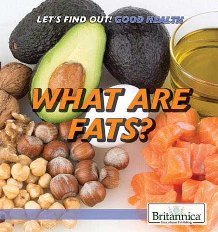 What Are Fats?