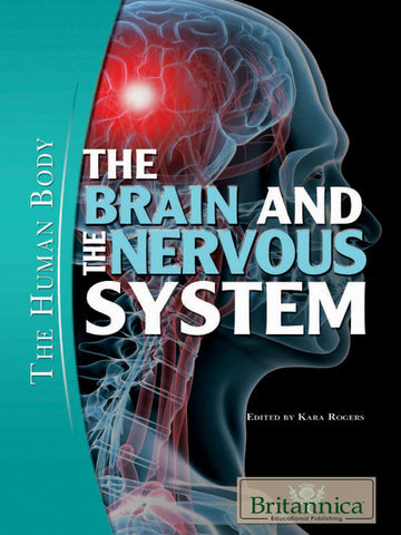 The Brain and the Nervous System