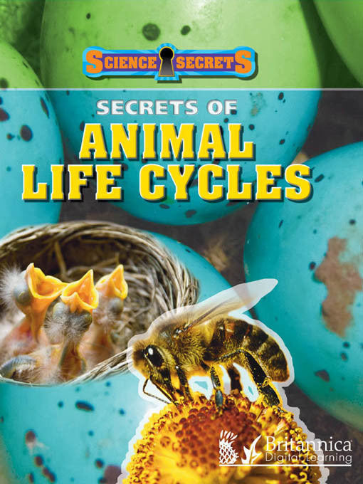 Secrets of Animal Life Cycles