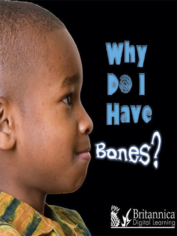 Why Do I Have Bones?
