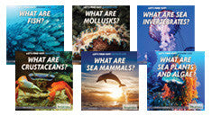 Let's Find Out! Marine Life Series (NEW!)