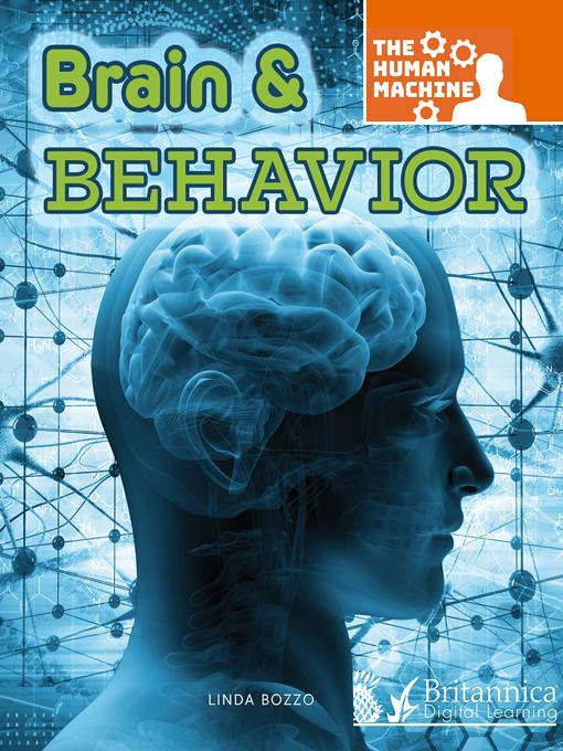 Brain and Behavior