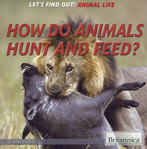How Do Animals Hunt and Feed?