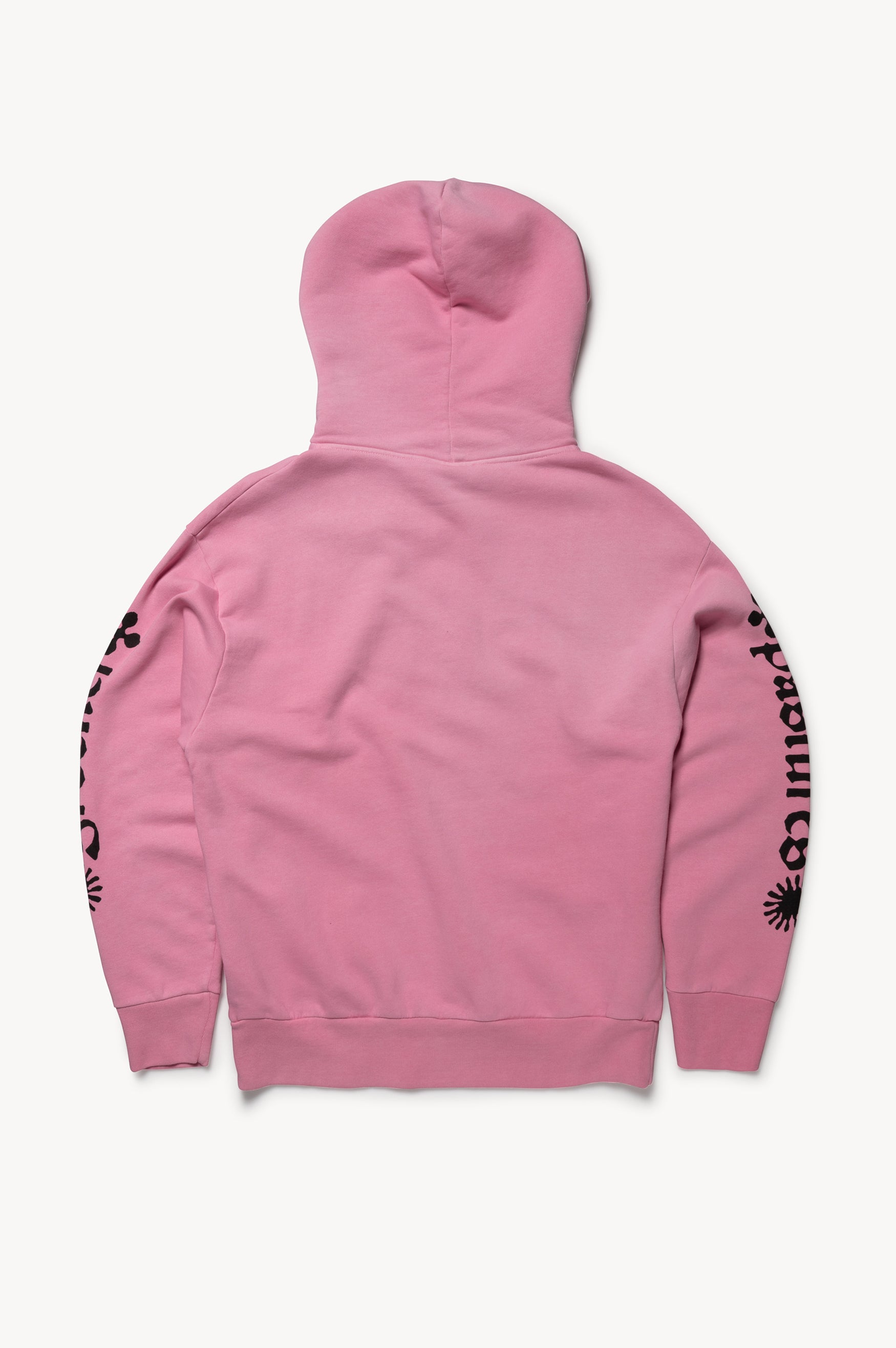 Load image into Gallery viewer, No Future Hoodie