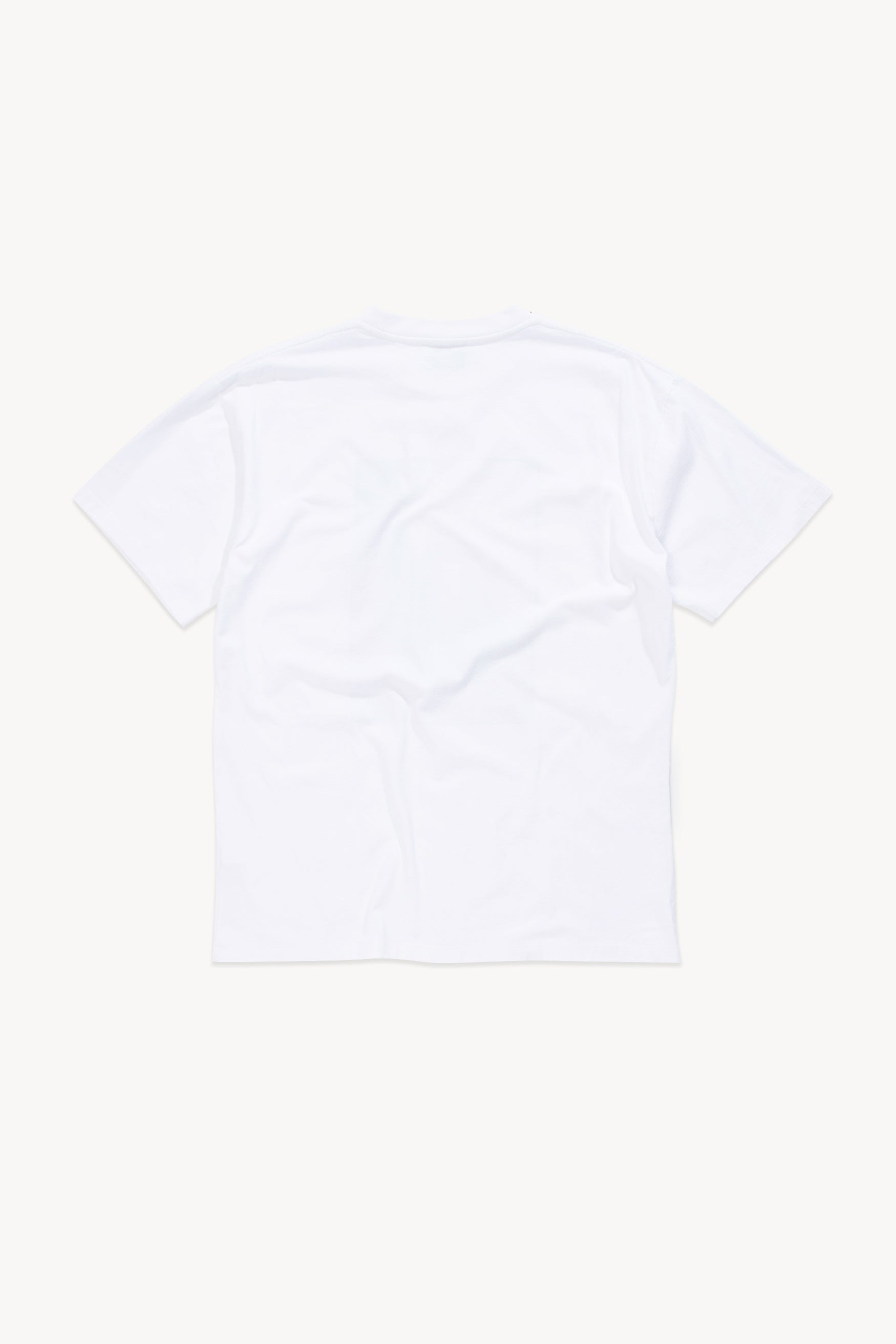 Load image into Gallery viewer, Stonehenge Polaroid Tee