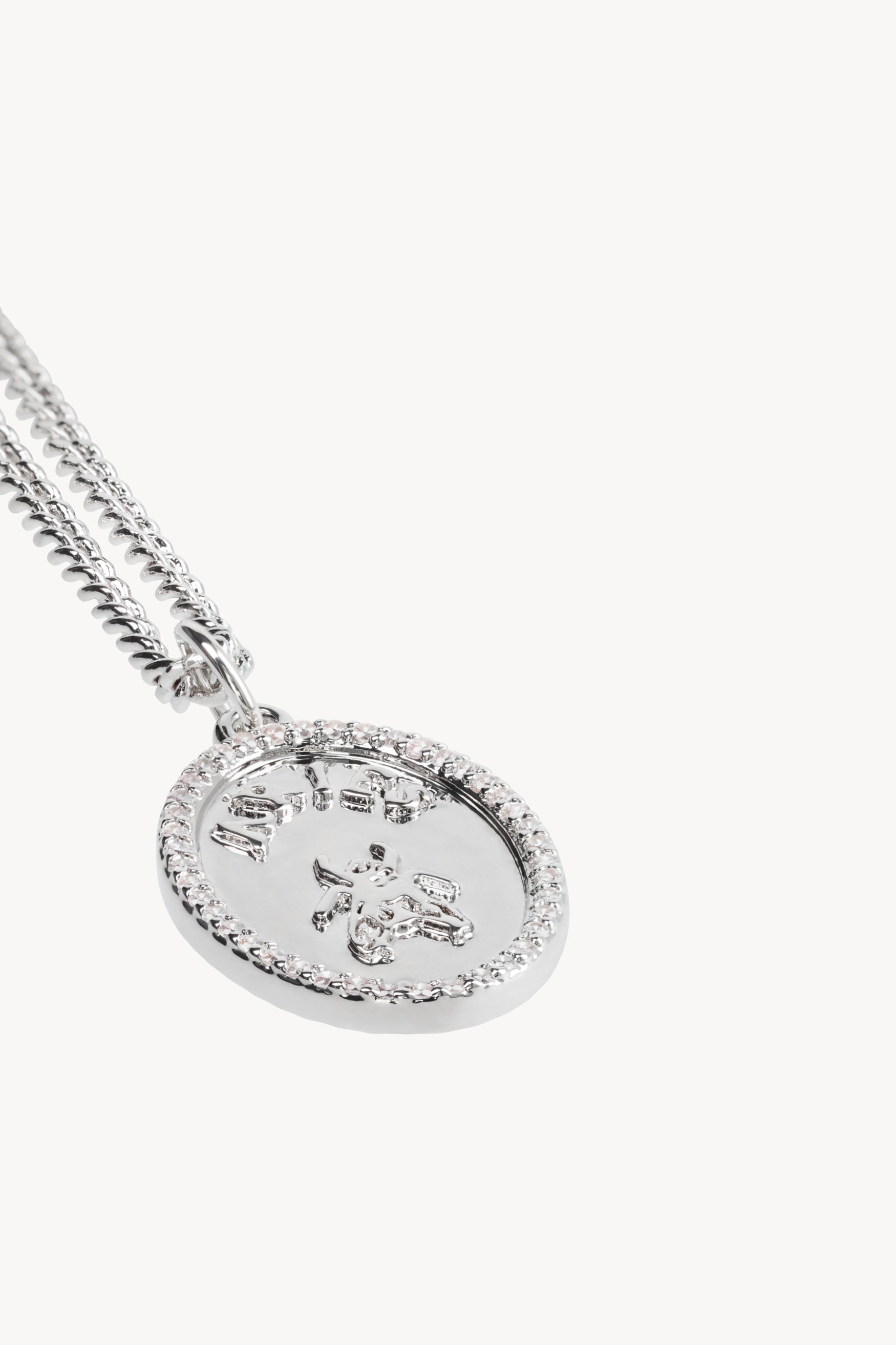 Load image into Gallery viewer, Fly Pavé Chain Necklace