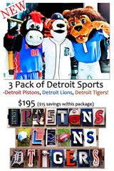 3 Pack Detroit Sports Frames