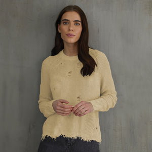 Distressed Scallop Shaker in Yellow Beige Natural. Women's Distressed Cotton Sweater. Autumn Cashmere.