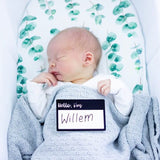 Hello I'm Birth Announcement Plaque