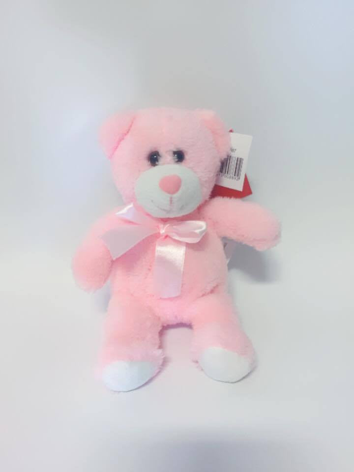 Pink Teddy with Bow