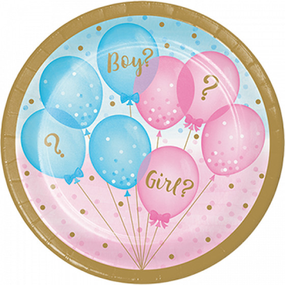 Gender Reveal Paper Plates | Boy or Girl?