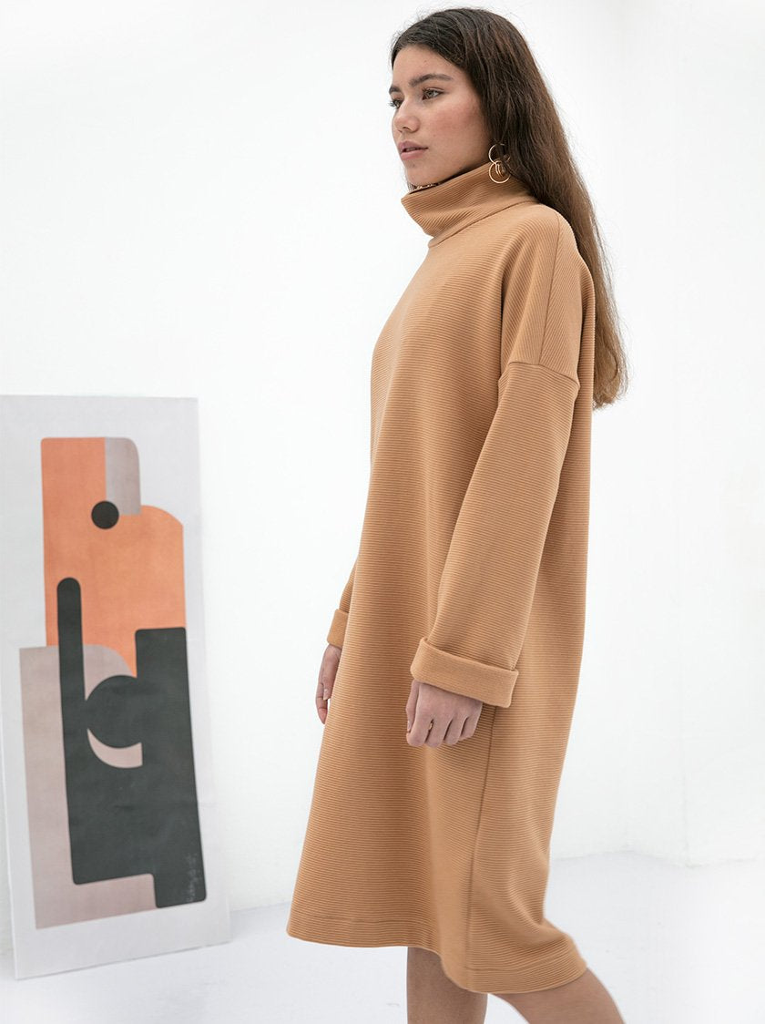 Caitlyn Turtleneck Dress