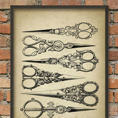 Antique Scissors Print