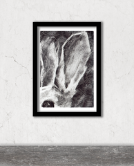 Walls Have Ears, Rabbit (A4)